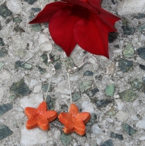 Oranžové květinky