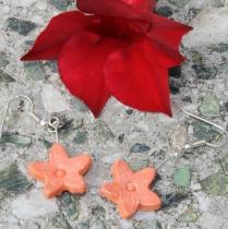 Růžovooranžové květinky